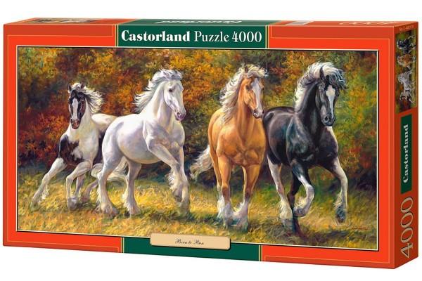 Пазл Castorland Лошади, 4000 деталей