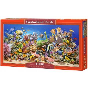 Пазл Castorland Подводный мир, 4000 деталей
