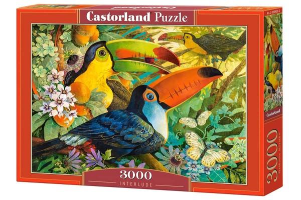 Пазл Castorland Туканы, 3000 деталей